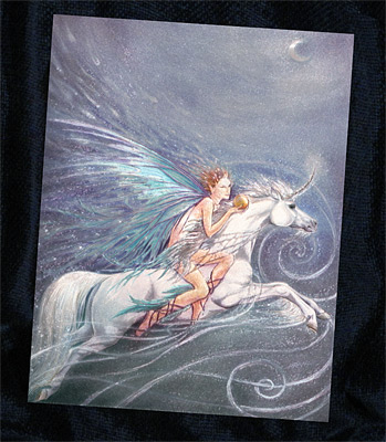The Fairy on the Flying Unicorn
